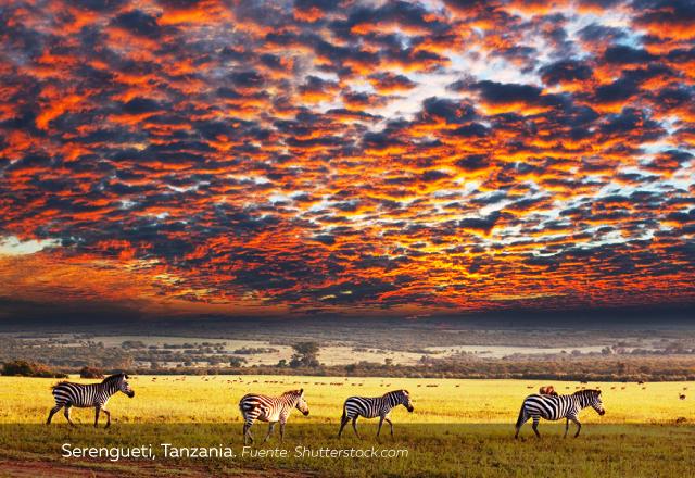 atardecer-en-Serengueti-Tanzania.jpg