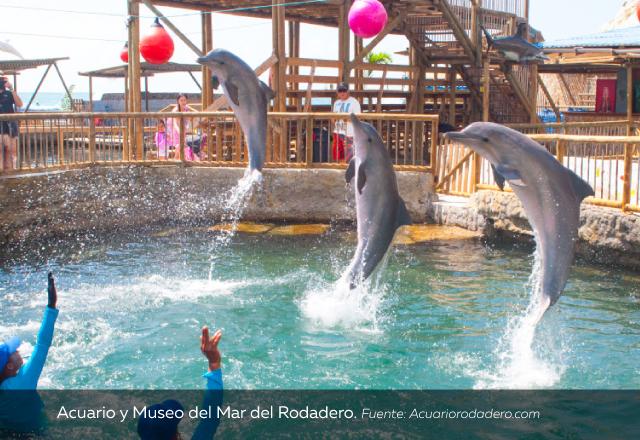 Acuario-y-Museo-del-Mar-del-Rodadero.jpg
