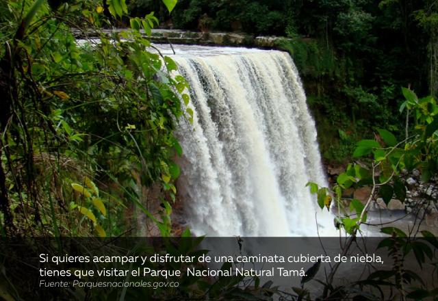 plan-vacaciones-Parque-Nacional-Natural-Tamá.jpg