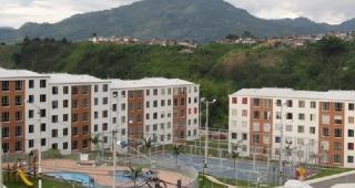 BOSQUES DE CUBA imagen 5