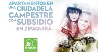SALINAS imagen 1