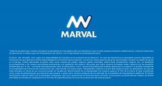 MASARI imagen 14