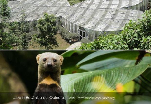 Jardín-Botánico-del-Quindío.jpg