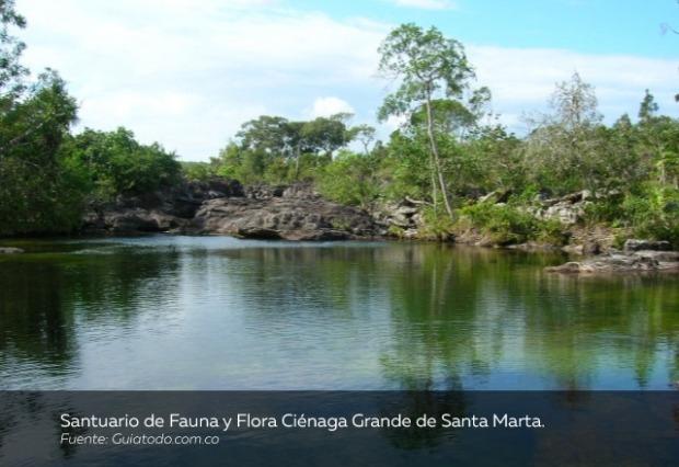 Santuario-de-Fauna-y-Flora-Ciénaga-Grande-de-Santa-Marta.jpg