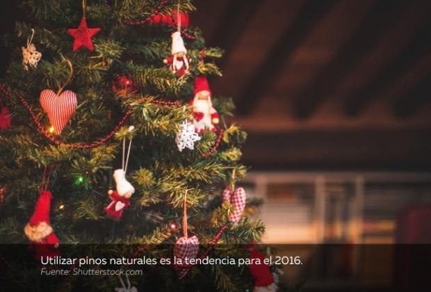decoración-navidad-pinos-naturales.jpg