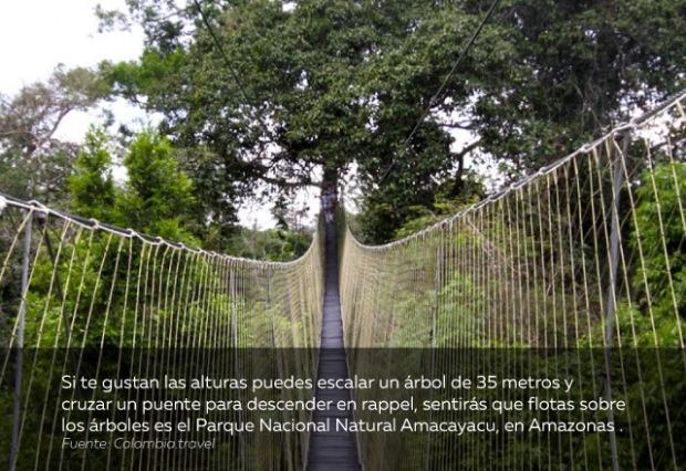 plan-vacaciones-Parque-Nacional-Natural-Amacayacu.jpg