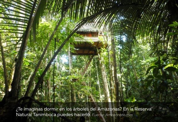plan-vacaciones-Reserva-Natural-Tanimboca.jpg